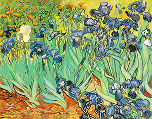 Vangogh-irises