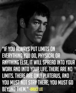Bruce Lee NO Limits
