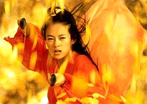 Chinese Warrior on Fire
